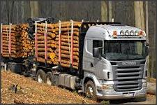 Водитель лесовоза в Латвии