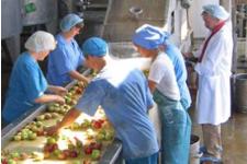Работа в Чехии склад овощей